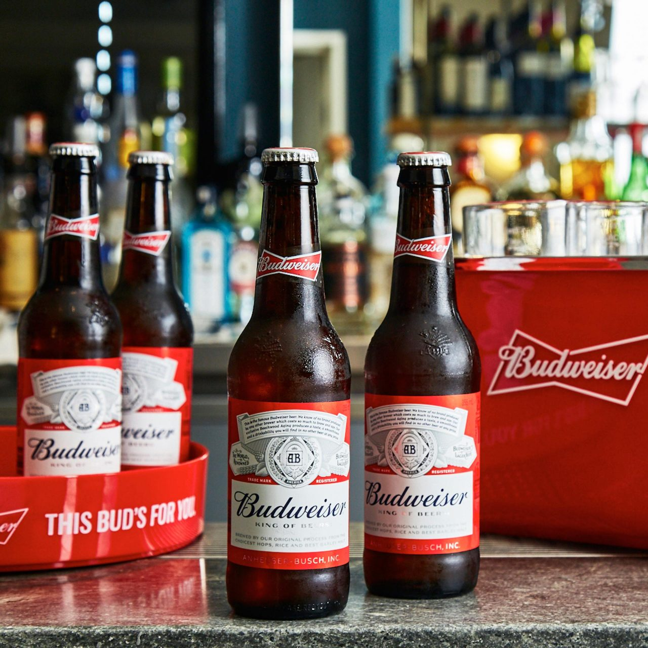 budweiser beer drinks photography